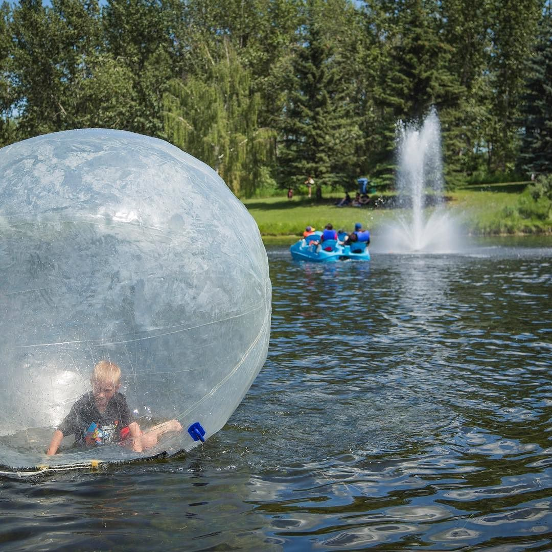 Today is the perfect day to try walking on water! #RedDeer #BowerPonds #WalkOnWater #WaterBalls #YQF #BowerPonds #Experience #Adventure #Alberta #VisitRedDeer