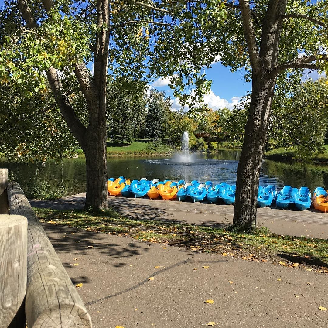 He leaves start to fall… #Nature #Fall #Seasons #BowerPonds #Parks #Change #Yellow #Leaves #Beauty #Outdoors #September #Reddeer #Explore #Fountain #Boats #Paddle #YQF #HotSpots #Adventure #Walk #running #Trails